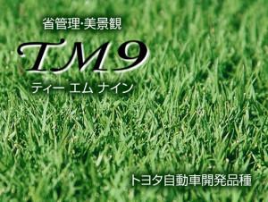 tm9-1