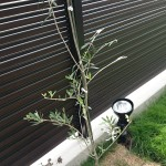 【DIYガーデニング】オリーブの木を植える【新築シンボルツリー】