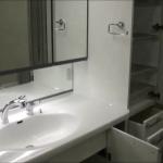 【Web完成宅見学会】洗面所・ユーティリティ~一条洗面台と豊富な収納、設計上気を付けたこと【動画・内覧会】