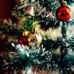 【外構計画】シンボルツリーはクリスマスツリーで如何でしょう?【参考価格・種類・育て方・レンタルなどの情報あり】